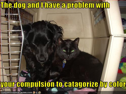 funny-pictures-cat-and-dog-have-a-problem