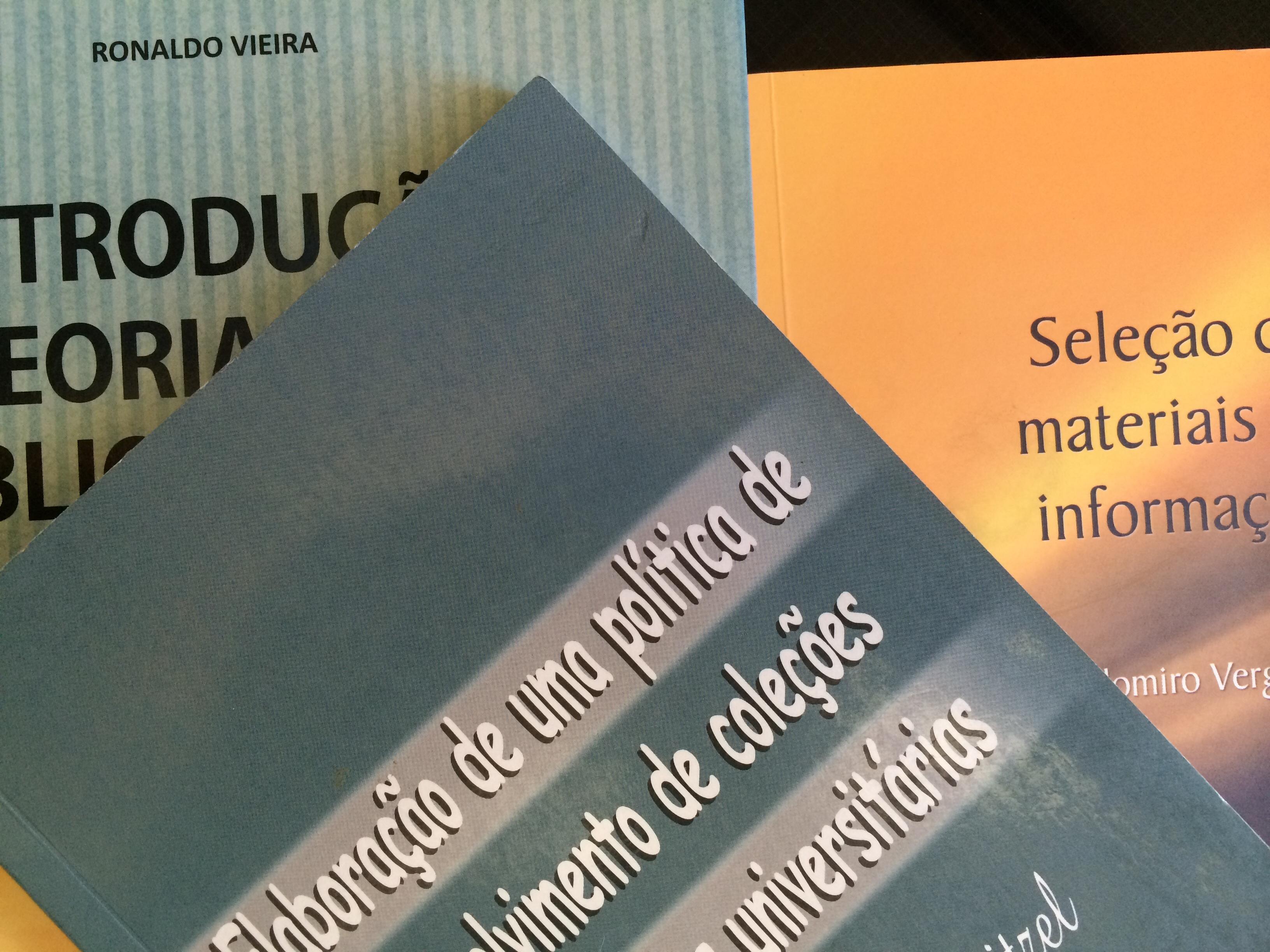 Gustavo henn bibliotecrios sem fronteiras ebooks e o desenvolvimento de colees fandeluxe Choice Image